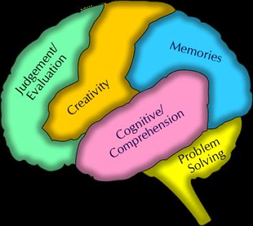 brain-two1